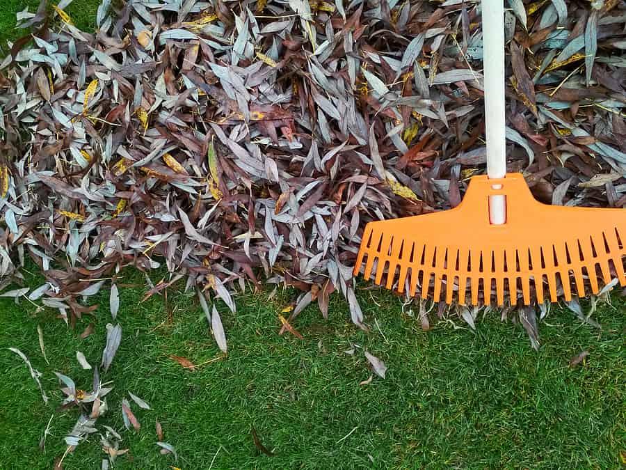 The Importance of Late Fall Fertilization and a Seasonal Lawn Program