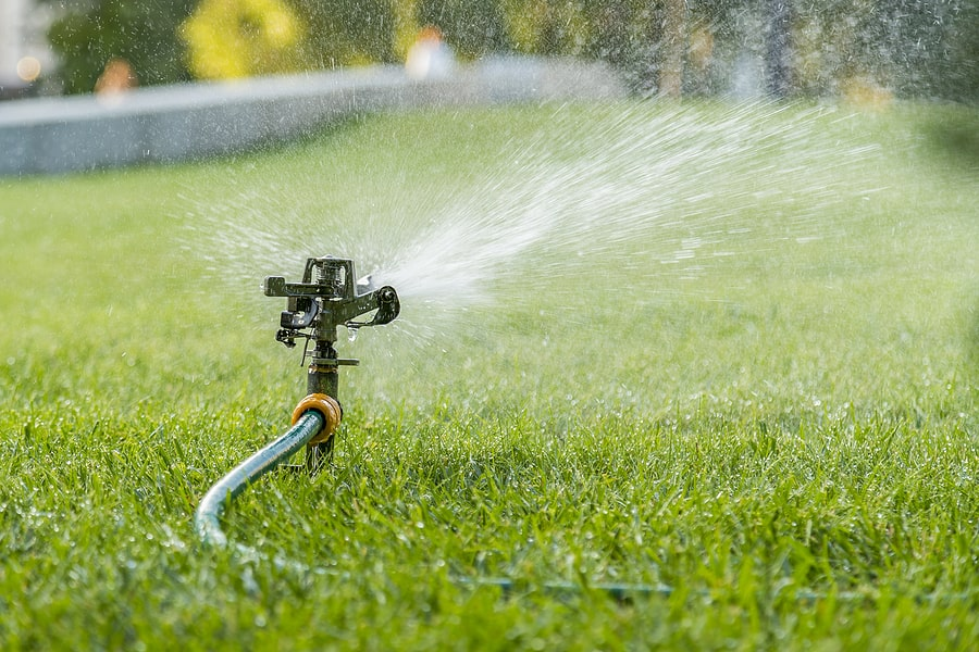 Tips on Maintaining your Lawn in the Spring and Getting a Jump on Crabgrass Control